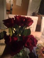 sent me roses by Moon-Shatte