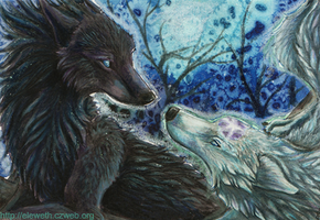 ACEO: Two sides of moon by Eleweth