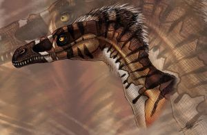 Velociraptor Mongoliensis by Autlaw
