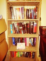 Bookshelf by Laura-in-china