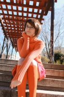 Velma Dinkley - Any clue? by Yuno-chaan