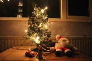 12-12-10 Christmas Lights 3 by Herdervriend