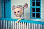 Summer on the Porch by Knibitz
