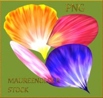 STOCK PNG petals by MaureenOlder