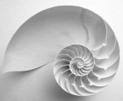 White Spiral by Lazy-Photon