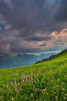 Atop Alps by Fishermang