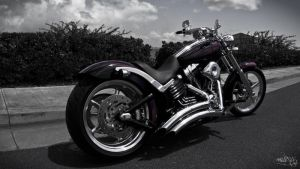 Custom Painted Harley Davidson by 5eleven