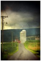 Silos and Corn Field by pubculture