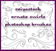 Ornate Swirl Brushes by seiyastock