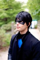 Casual Nightwing by Lightning--Baron