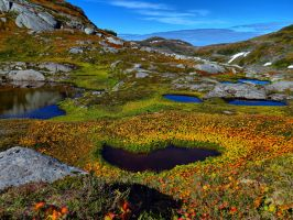 high country in the fall by Glacierman54