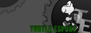 Turtle eSport - Facebook Cover by CoresShowroom