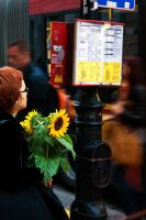 Warsaw 058 lady and sunflower by remigiuszScout