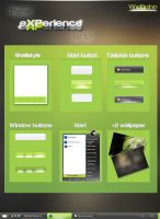 Theme eXPerience for XP by Welton-Arruda