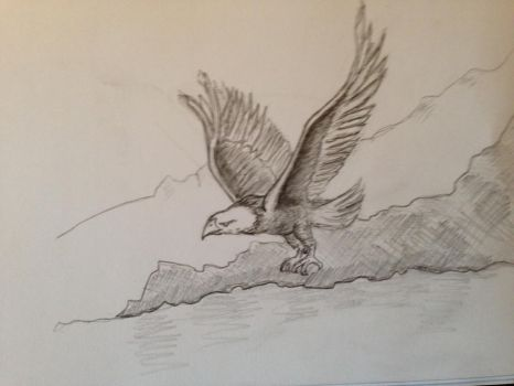 Eagle Flying by Duuseri