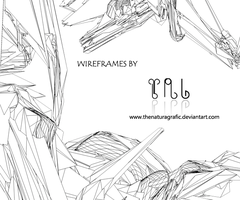 Pack C4d Wireframe by TheNaturaGrafic