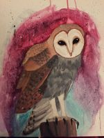 The Owl by Mmm-Brainss
