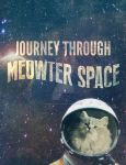 Journey through Meow-ter Space by VulpesvulpesLady