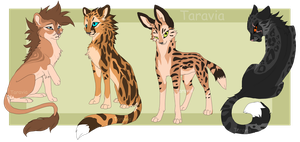 Big cats adoptable auction by TaraviAdopts