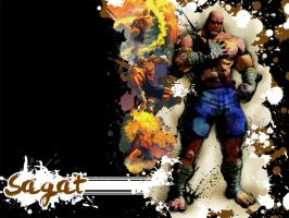 SFIV Splatter Sagat by Vegett0