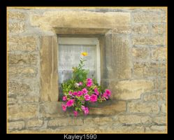 Standing Out by Kayley1590