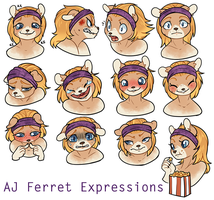 AJ Ferret: Expressions by CloverCoin