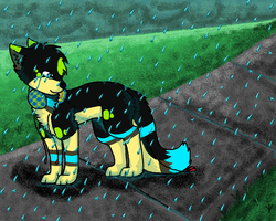I Love Walking In The Rain... by Ima-Falcon