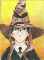 Not Slytherin, not Slytherin by ElvenWarrior14