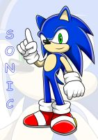 Sonic The Hedgehog by Arung98