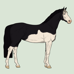 Horse Adopt - 1 Closed by Miss-Adopts