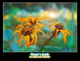 Flower's Death by Mad3m0is3ll3-K3y