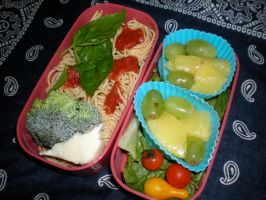 Bento 7 by droppedfork