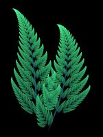 Apophysis Anniversary Ferns by Gibson125