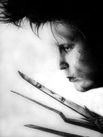 Edward Scissorhands by zetcom