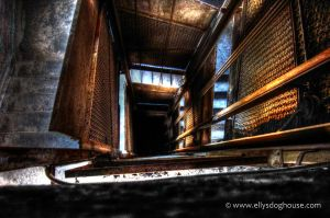 The Shaft by ellysdoghouse