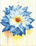 Blue Flower by kgphee