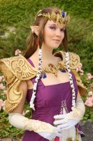 Zelda Cosplay: Princess by Yesta-sensei