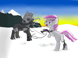 Fighting Wirepony on a Snowfield by No-1ne