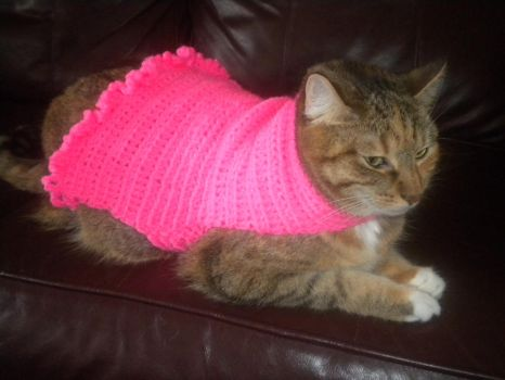 Pink Crochet Cat Sweater by SharpieObsessed