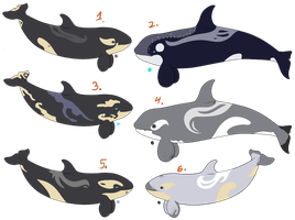 Orca adoptables - CLOSED by CharlyArtz
