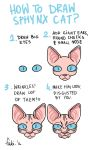 How to draw sphynx cat by Fukari