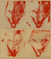 4 red wolves test by wylieblais