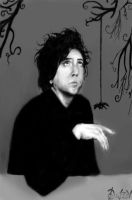 My vision of Tim Burton by heartless-doll