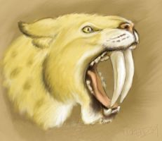 Sabretooth Cat by napalmnacey