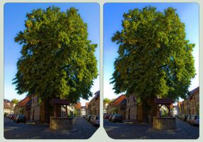 Wernigerode HyperTree 3D ::: HDR Cross-Eye by zour