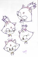 Some drawings of Blaze the cat by Lovely-Tsandy
