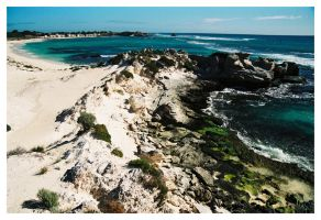 Rottnest Island 5 by wildplaces
