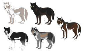 Wolf adopts All open by WulfTheWolf