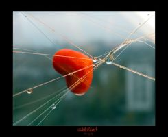 Webheart by Silvery-Lily