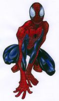 Spidey by Meecho